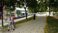 El carrer Secretari Coloma, a la imatge, recupera la denominació anterior de Pau Alsina