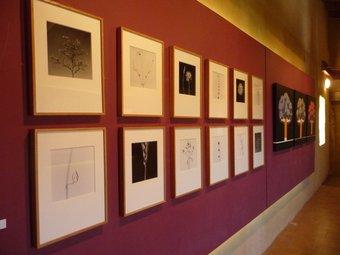 Dos fotògrafs i vuit pintors participen en l'homenatge a Horta. G.M