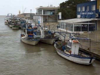 Zona d'amarre de la flota matriculada i adscrita a Gandia. ARXIU