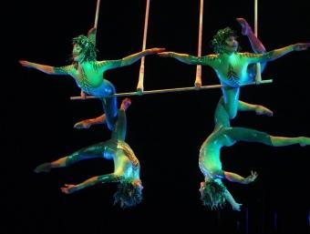 Algunes cabrioles del Circ du Soleil podrien tenir un paral·lelisme amb la innovació i el risc.  ARXIU