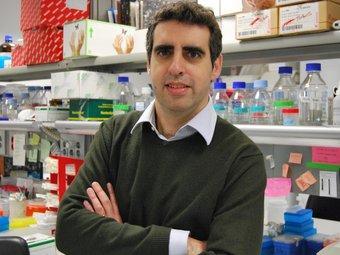 L'investigador Manel Esteller participa en el projecte Curelung ARXIU
