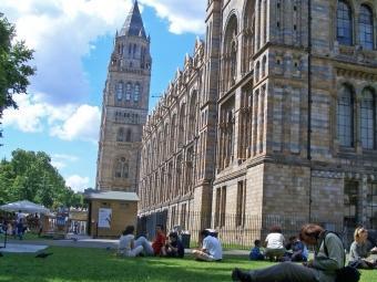 Una imatge del Museu d'Història Natural de Londres on hi ha restes de 138 indígenes Q. ARANDA