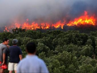Vistes del incendi a la zona de La Boadella, durant el segon dia de la lluita contra les flames a l'Alt Empordà LLUÍS SERRAT