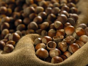 L'avellana de Reus (i el seu tractament per a elaborar cereal) ha merescut un premi.  Foto:L'ECONÒMIC