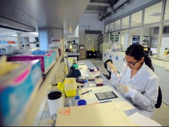 Imatge del laboratori d'una empresa biotecnològica.  ARXIU / QUIM PUIG