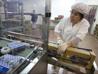 Imatge de la planta que té a Santa Pau La Fageda, una de les cooperatives més destacades de Catalunya.  ARXIU / LLUÍS SERRAT