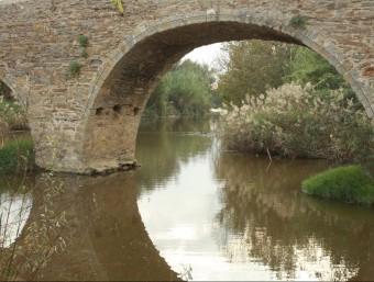 Vista des de sota el pont de Gualta, presa aigua amunt, ahir mateix. JOAN PUNTÍ