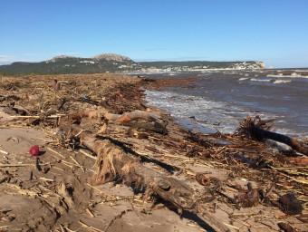 Estat de la platja de la gola del Ter a Torroella ahir després de la llevantada ROBERT CARMONA