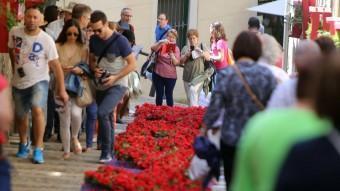 Un dels carrers del barri vell amb una catifa de flors i molts visitants. quim puig