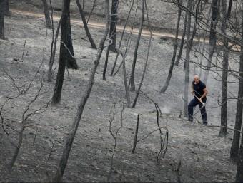 Després del pas del foc, ahir les imatges de desolació i terra cremada eren una constant als boscos i en alguns nuclis habitats de la zona afectada EFE/ REUTERS