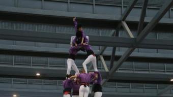 L'enxaneta dels Castellers de Figueres, amb la seva indumentària lila, en el moment de fer l'aleta del 4d7, ahir a la plaça Catalunya, sota cobert. La colla va completar l'actuació amb el 5d7, el 7d7 i el ventall final de 5 QUIM PUIG