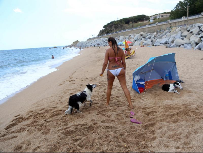 Una banyista amb dos gossos gaudeix dd'una jornada de platja a la zona de les Banyeretes de Sant Pol de Mar aquest estiu QUIM `PUIG