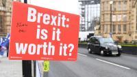 Protesta contra el 'Brexit', ahir,  a tocar del Parlament britànic, a Londres