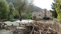 El Ter va inundar les naus d'aquesta filatura d'Agafallops, a Ripoll, on la vegetació va obstruir el pas de l'aigua  al pont que hi ha a la zona