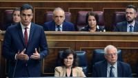 Pedro Sánchez durant una sessió de control al Congrés dels Diputats