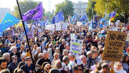Protesta pel centre de Londres