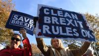 Manifestants a favor del 'Brexit', amb pancartes a Londres