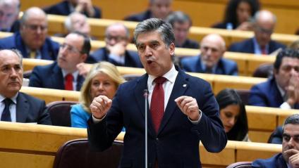 El portaveu del PP al Senat, Ignacio Cosidó