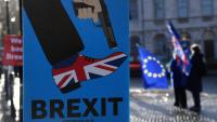 Manifestació a favor de quedar-se dins la UE davant del Parlament britànic