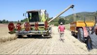 El sector agrícola és un dels que va liderar les inversions catalanes a l'estranger al llarg del 2018
