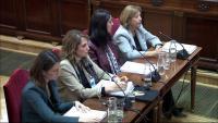 Quatre pèrits del Ministeri d'Hisenda , proposades per la fiscalia i l'advocada de l'Estat, en el judici al Tribunal Suprem, ahir