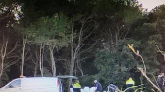 Els funeraris carreguen el cadàver mentre els Mossos inspeccionen la zona