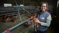 Cristina Bech, a les instal·lacions de la seva granja a Castelló d'Empúries, on cria unes 1.400 gallines  a l'aire lliure