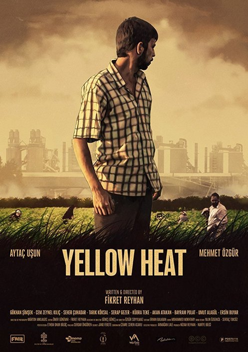 Calor groc